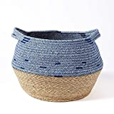 "Modicum | Natural Seagrass and Cotton Rope Basket - Modern Woven Belly Basket, Home Décor Accent, Organizer, Basket for Plant (up to 10"" Pot), Indoor Planter, Nursery Laundry Hamper, Creative Storage"