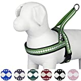 Blueberry Pet 7 Colors Soft & Comfy Jacquard Padded Dog Harness, Chest Girth 21.5'' - 27.5'', Moss Green, Medium, Reflective Adjustable Harnesses for Dogs