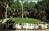 Jacksonville 's Free Zoo Jacksonville, Florida Original Vintage Postcard offers