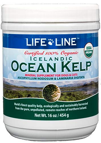 Life Line Pet Nutrition Organic Ocean Kelp Supplement for Skin & Coat, Digestion, Teeth & Gums in Dogs & Cats, 16 oz