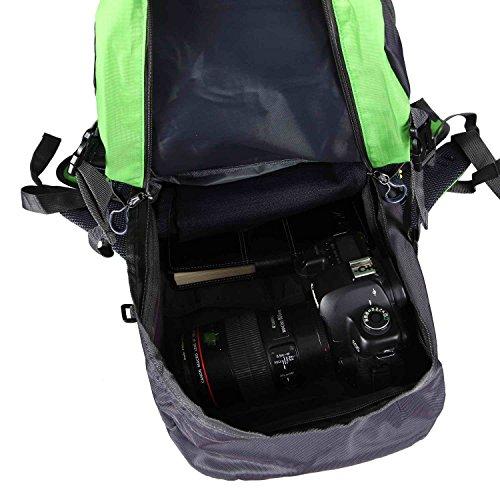 Natural Home 40L Outdoor Rücksack Sport Militärischer Wasserdicht Rucksack für Camping Wandern Bergwandernsack Apfel Grün