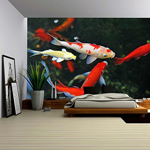 wall26 - Koi Carps Swimming in the Pond - Removable Wall Mural | Self-adhesive Large Wallpaper - 66x96 inches
