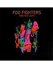 WASTING LIGHT (LP)
