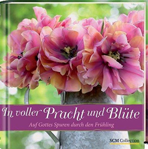 In voller Pracht und Blüte: Auf Gottes Spuren durch den Frühling