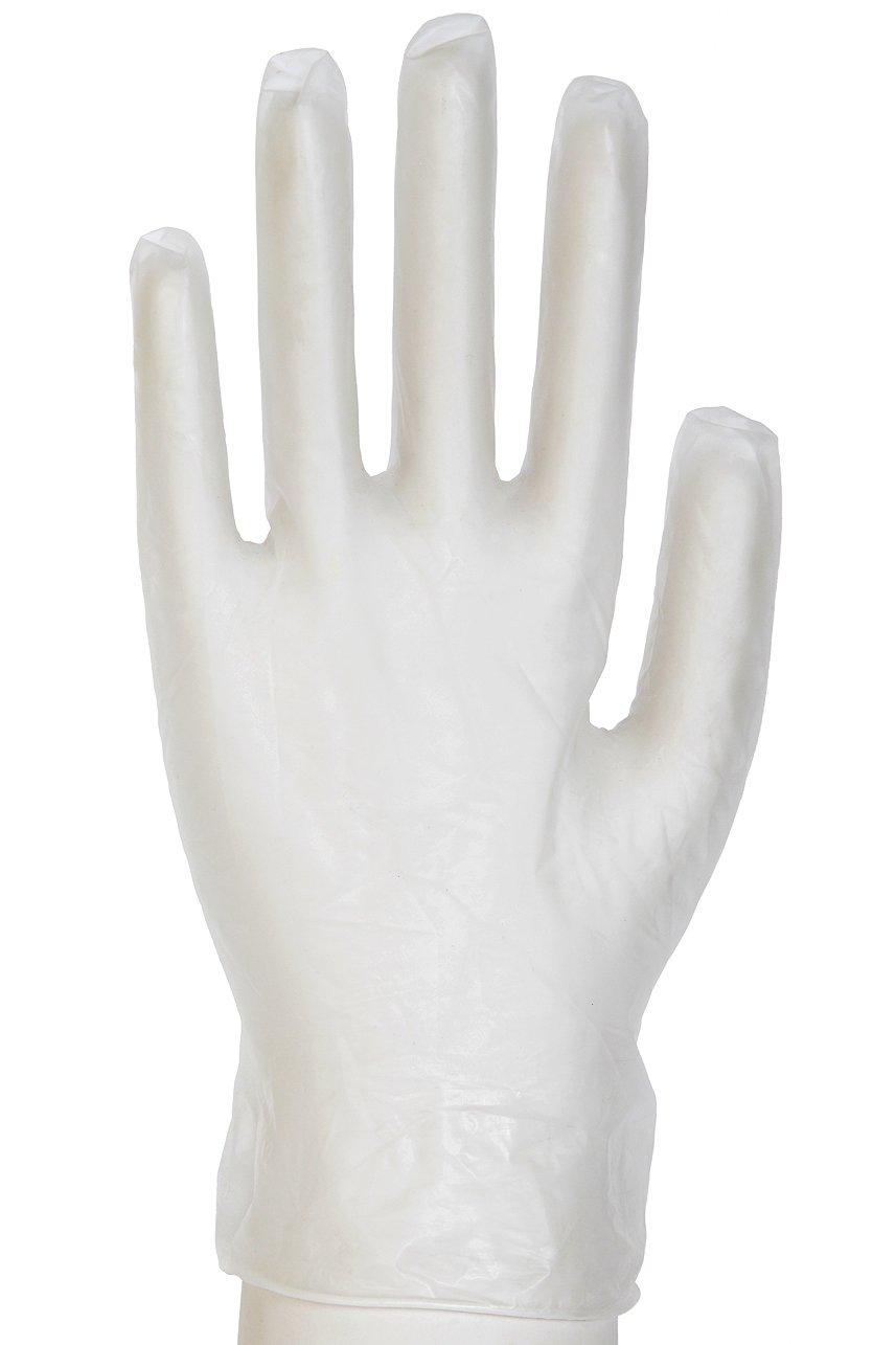 Daxwellビニールグローブ、パウダーフリー X-Large F10001749B 100 B00F6Q8KVE X-Large|1箱に手袋100枚入り X-Large