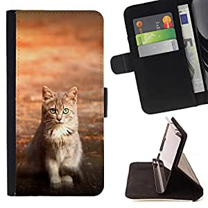 - Cat Cute Kitty - - Monedero pared Design Premium cuero del tir?n magn?tico delgado del caso de la cubierta pata de ca FOR LG Nexus 5 D820 D821 Funny House