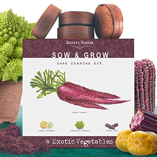 Nature#039s Blossom Exotic Vegetables Growing Kit 4 Unique Plants To Grow From Seed Beginner Gardeners Starter Set To Start Your Own Unusual Home Veg Garden Gardening Project For Kids and Adults