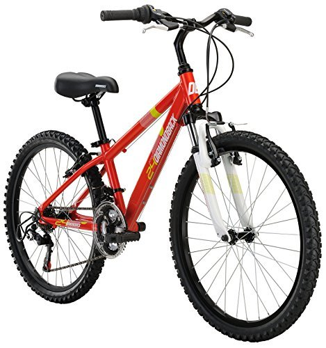 Diamondback Bicycles Octane 24 Kid's Mountain Bike 24 Wheels Orange [並行輸入品] B06XFQ5YZN