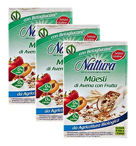 Nattura Natillas de Avena con Frutas sin gluten Ricas en ...