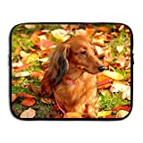 13 15 inch Dog Autumn Leaf Laptop Sleeve Bag Water Resistant