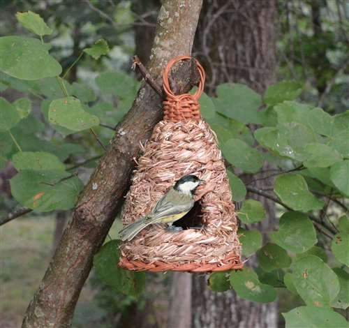 Songbird Essentials Hanging Grass Roosting Pocket Hive B00F9YX2B6