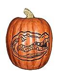 Cumberland Designs Florida Resin Pumpkin Decor, Small