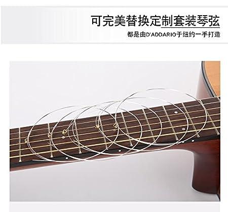 DAddario PL011 - Cuerda para guitarra eléctrica de acero, talla 11, 1 x Cuerda suelta: Amazon.es: Instrumentos musicales