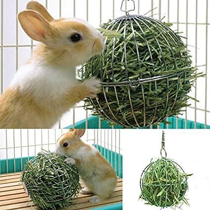 hengbaixin - Dispensador de Alimentos para hámster, Rata, Conejo, Bola de heno,