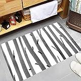 Promini Bath Mat, Soft Floor Mats, Absorbent