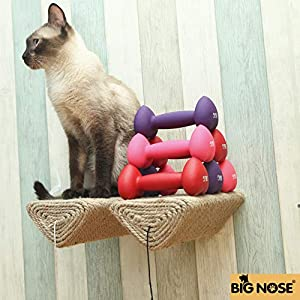 BIG NOSE - Cat Scratching Post with Leaser Feather and Fluffly Ball Wall Mount Shelves and Steps Sturd Wall Version 64