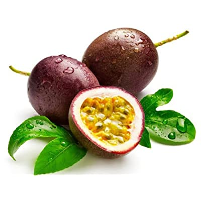 10 + passion fruit (Passiflora edulis) seeds purple granadilla Edible Tropic I74 : Garden & Outdoor