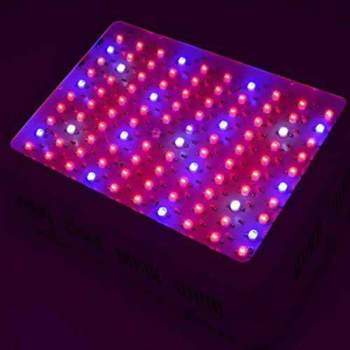51Ozjz1xXhL - HollandStar LED Grow Light Full Spectrum 1000 Watt/1200W for Indoor Plants Veg and Flower