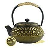 kettle iron - HwaGui Chinese Iron Teapot Kettle with Stainless Steel Infuser,Golden Coin Pattern (600ml/20oz)