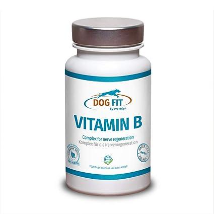 DOG FIT by PreThis Complejo Vitamin B para Perros | para el ...