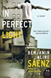 img - for In Perfect Light: A Novel book / textbook / text book