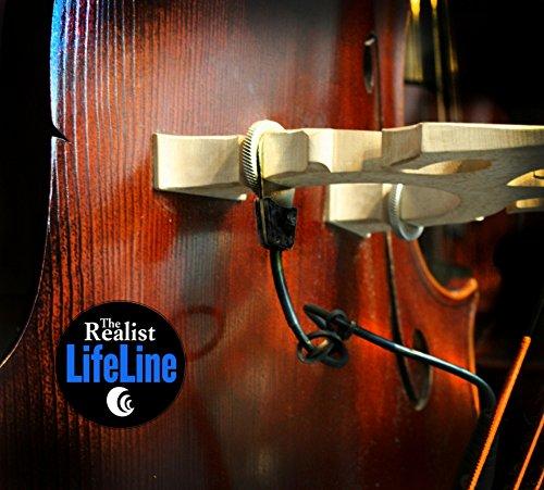Realist Orchestral String Instrument Part (RLSTLL1)