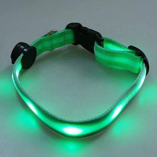 6 LEDlighted Dog Collar Flashing Light Up Safety Collar-Green, My Pet Supplies