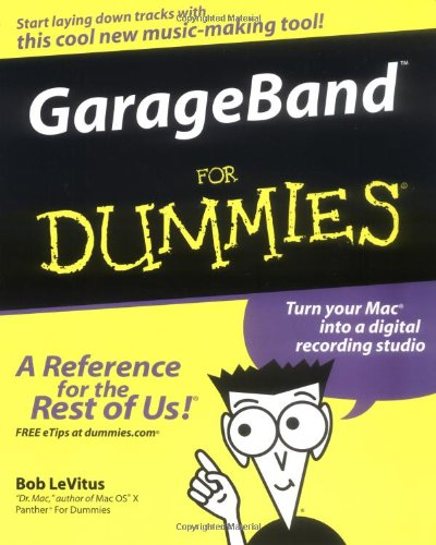 garage for dummies - 1
