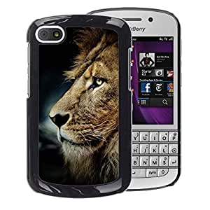 A-type Arte & diseño plástico duro Fundas Cover Cubre Hard Case Cover para BlackBerry Q10 (Messy Hair Lion Mane Golden Brown)