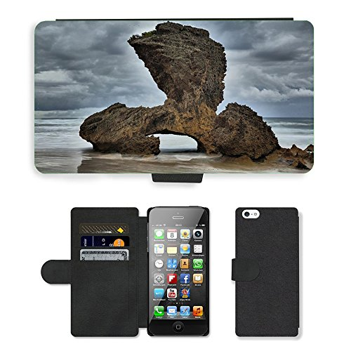PU Leather Cover Custodia per // M00421595 Formation Afrique du Sud Ocean Rocher // Apple iPhone 5 5S 5G