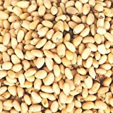 Pine Nuts - Bulk Pine Nuts 10 Pound Value Box - Freshest and highest quality nuts from US Based farmer market - Quality nuts for homes, restaurants, and bakeries.