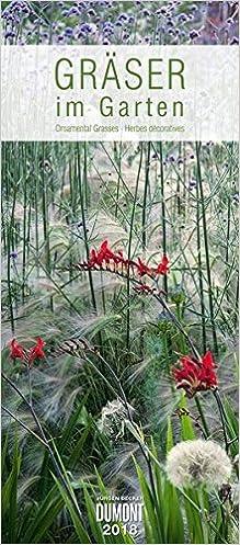 Gräser Im Garten gräser im garten 2018 dumont wandkalender garten kalender