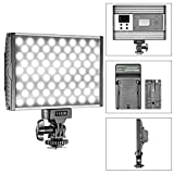 Neewer Dimmable Bi-Color 144 LED Video Light 3200K-5600K Ultra-thin Light Panel with 2600mAh Li-ion Battery and Wall Charger for Canon Nikon Sony Pentax Panasonic Olympus DSLR Camera Camcorder