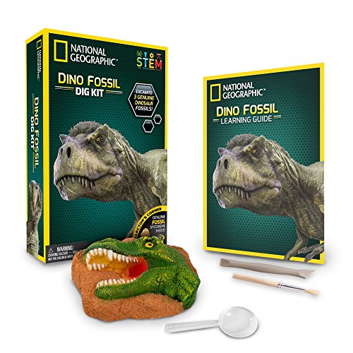 (NATIONAL GEOGRAPHIC Dino Fossil Dig Kit - Excavate 3 real fossils including Dinosaur Bones & Mosasaur Teeth - Great Jurassic Science gift for Paleontology and Archeology enthusiasts of any age)