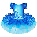 iiniim Girls Princess Crystal Shoes Print Dress Ballet Tutu Leotard Skirts Party Gymnastics Costumes 4-5 Years
