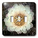 3dRose lsp_32378_2 Decorative Colorful Garden Botanic Classic Plant Sw Southwest Desert Cactus White Gold Flower Double Toggle Switch