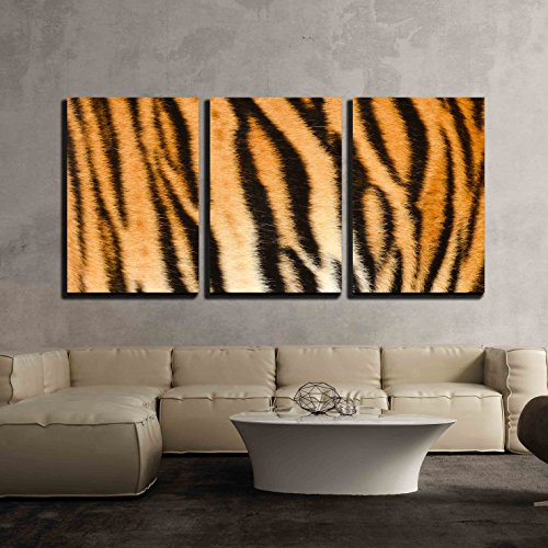 (wall26 - 3 Piece Canvas Wall Art - Texture of Real Tiger Skin Fur - Modern Home Decor Stretched and Framed Ready to Hang - 16