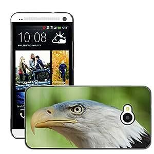 GoGoMobile Slim Protector Hard Shell Cover Case // M00123704 Bald Eagle Eagle Bird Nature Natural // HTC One M7