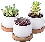 StarPack Premium Small White Ceramic Succulent Planter Pots with Base Parent