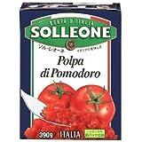 SOLLEONE ソル・レオーネ ダイストマト 390g(テトラ紙パック) 1ケース(16パック)