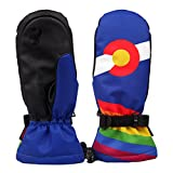 Timeiya Fairy Tale Winter Skiing Gloves Warm Waterproof Windproof Anti-Skid for Outdoor Activities Men HiPORA