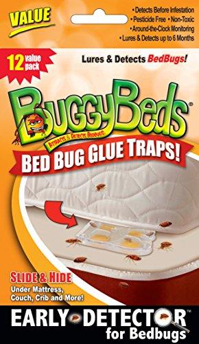 12pk-value-buggybeds-bed-bug-glue-traps
