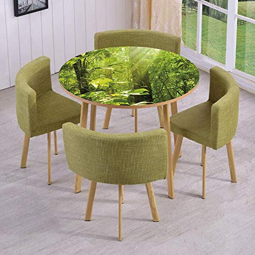 Sunrays Framed - iPrint Round Table/Wall/Floor Decal Strikers/Removable/Forest with Sunray Foliage Leaf Branches Woodland Eco Jungle Misty Picture/for Living Room/Kitchens/Office Decoration
