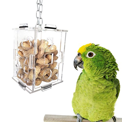 XMSSIT Parrot Creative Foraging Toy Feeder Bird Intelligence Growth Training Toys Acrylic Feed Box for Parakeet Budgies Cockatiels Love Birds Cage Accessories
