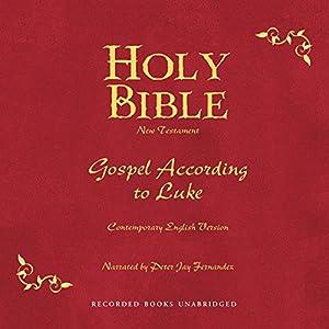 Holy Bible, Volume 24 Audiobook