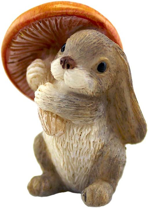 NW Wholesaler Fairy Garden Accessories - Miniature Fairy Garden Figurines, Tools, Supplies, Animals, and Mini Furniture for Fairy Gardens (Bunny Rabbit)