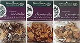 Mycological Oranic and Wild Gourmet Dried Mushroom 3 Variety Bundle: (1) Organic Maitake Mushrooms, (1) Organic Crimini Mushrooms, and (1) Wild Gourmet Chanterelle Mushrooms, 1 Oz. Ea.