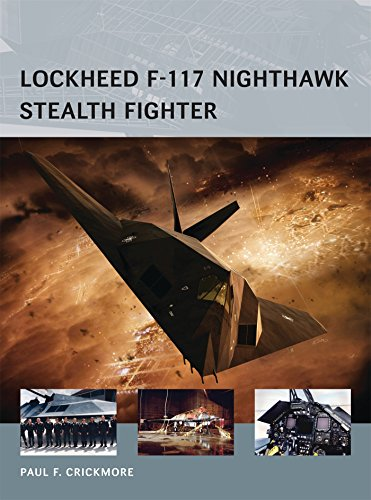 Lockheed F-117 Nighthawk Stealth Fighter (Air Vanguard)
