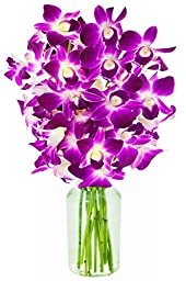 Mother\'s Day Purple Orchid with Vase