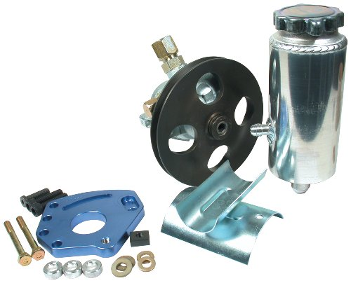(Allstar ALL48240 Head Mount Style Power Steering Kit for Small Block Chevy)